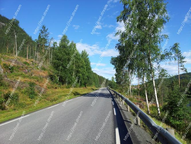 Image of Road, Natural landscape, Highway, Thoroughfare, Tree, Asphalt, Sky, Road surface, Infrastructure, Biome