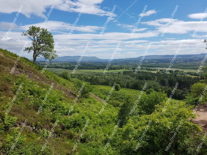 Image of Vegetation, Natural landscape, Nature, Sky, Nature reserve, Natural environment, Green, Wilderness, Highland, Hill