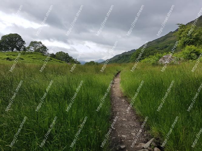 Image of Natural landscape, Nature, Green, Vegetation, Grass, Grassland, Natural environment, Sky, Wilderness, Hill