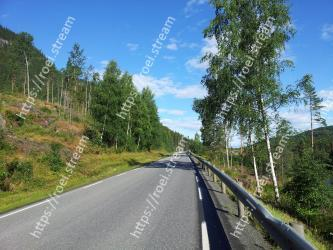 Road, Natural landscape, Highway, Thoroughfare, Tree, Asphalt, Sky, Road surface, Infrastructure, Biome