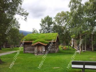 Tree, House, Grass, Property, Nature reserve, Cottage, Botany, Rural area, Home, Grass family