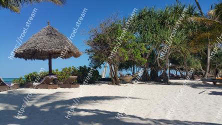 Tree,Beach,Vacation,Tropics,Sky,Sea,Resort,Tourism,Caribbean,Hut