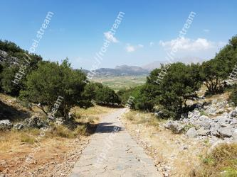 Vegetation,Mountain,Sky,Mountainous landforms,Wilderness,Trail,Road,Tree,Dirt road,Plant community