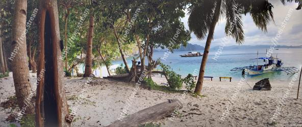 Beach,Tree,Shore,Vacation,Water,Sand,Coast,Tropics,Sea,Ocean