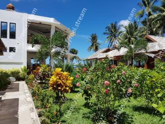 Vegetation, Property, Home, House, Real estate, Tropics, Resort, Botany, Palm tree, Building