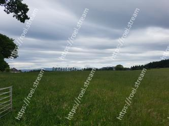 Grassland, Pasture, Sky, Natural landscape, Green, Meadow, Natural environment, Cloud, Grass, Land lot