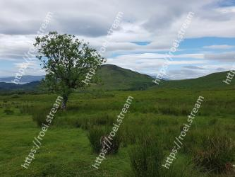 Grassland,Mountainous landforms,Natural landscape,Highland,Hill,Natural environment,Nature,Vegetation,Pasture,Wilderness