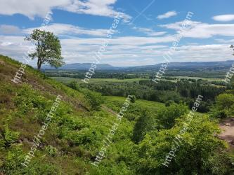 Vegetation, Natural landscape, Nature, Sky, Nature reserve, Natural environment, Green, Wilderness, Highland, Hill
