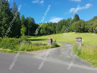 Natural landscape,Nature,Road,Natural environment,Grass,Tree,Sky,Meadow,Pasture,Grassland