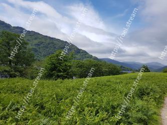 Highland,Vegetation,Natural landscape,Nature,Hill station,Green,Mountainous landforms,Hill,Sky,Plantation