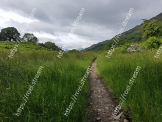 Natural landscape,Nature,Green,Vegetation,Grass,Grassland,Natural environment,Sky,Wilderness,Hill