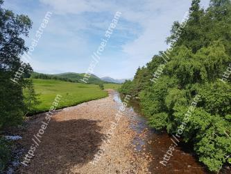 Trail,Natural landscape,Dirt road,Road,Tree,Natural environment,Lane,Nature reserve,Wilderness,Sky