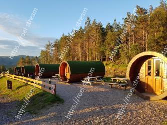 Natural environment,Tree,Transport,Sky,Tire,Infrastructure,Leaf,Landscape,Rural area,Road