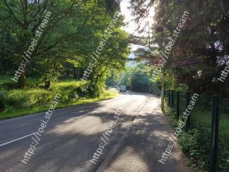 Natural landscape,Nature,Tree,Road,Sky,Lane,Asphalt,Natural environment,Vegetation,Light