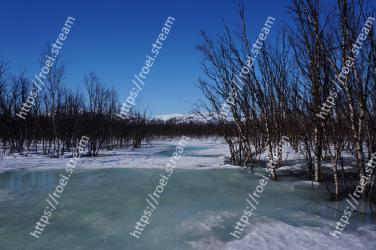 Winter, Snow, Nature, Natural landscape, Tree, Sky, Freezing, Water, Ice, River