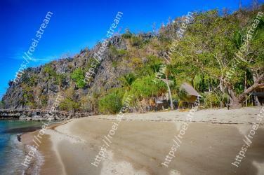 Body of water,Beach,Coast,Shore,Sea,Natural landscape,Tree,Tropics,Coastal and oceanic landforms,Sand