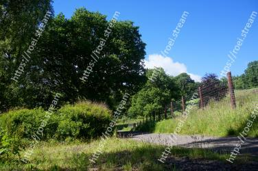 Natural landscape, Vegetation, Tree, Nature, Nature reserve, Natural environment, Grass, Plant community, Biome, Property