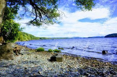 Body of water,Nature,Natural landscape,Blue,Sky,Water,Shore,Sea,Vegetation,Coast