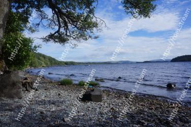 Body of water, Shore, Water, Sky, Sea, Coast, Natural landscape, Tree, Rock, Ocean