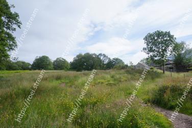 Natural landscape, Vegetation, Natural environment, Grassland, Nature reserve, Meadow, Land lot, Grass, Pasture, Shrubland