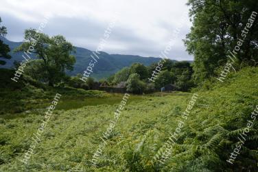Vegetation, Natural landscape, Nature, Highland, Nature reserve, Natural environment, Green, Grassland, Wilderness, Tree