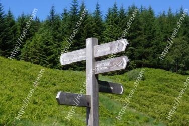 Nature reserve,Natural landscape,Biome,Meadow,Mountain,Tree,Mountain range,Cross,Alps,Grassland