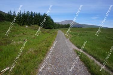Dirt road,Grassland,Road,Highland,Grass,Natural landscape,Natural environment,Hill,Meadow,Path