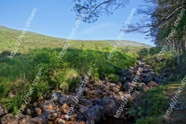 Nature,Vegetation,Natural landscape,Wilderness,Natural environment,Mountainous landforms,Highland,Hill,Nature reserve,Fell