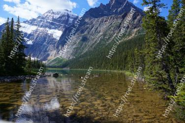 Mountain, Mountainous landforms, Nature, Natural landscape, Wilderness, Reflection, Lake, Mountain range, Tree, Tarn Mount Edith Cavell