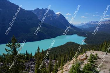 Mountainous landforms, Mountain, Wilderness, Nature, Larix lyalliiSubalpine Larch, Mountain range, Ridge, Highland, Sky, Alps Peyto Lake, Canadian Rockies, Peyto Lake, Canada Lake