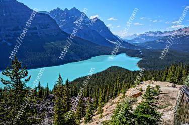 Mountainous landforms, Mountain, Larix lyalliiSubalpine Larch, Nature, Wilderness, Natural landscape, Mountain range, Highland, Moraine, Ridge Peyto Lake, Canadian Rockies, Peyto Lake, Canada Lake