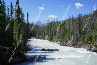 Body of water, Nature, Wilderness, River, Water, Mountain, Mountain river, Natural landscape, Mountainous landforms, Tree Yoho National Park