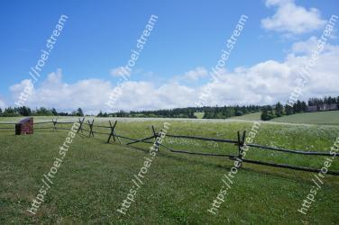 Pasture, Grassland, Land lot, Natural environment, Meadow, Natural landscape, Fence, Farm, Field, Rural area