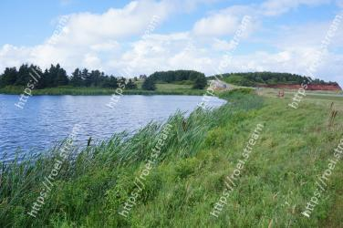 Natural landscape, Body of water, Water resources, Nature, Vegetation, Natural environment, Bank, Nature reserve, Reservoir, Water
