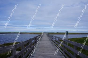 Boardwalk, Walkway, Water, Sky, Natural landscape, Horizon, Sea, Shore, Grass, Pier