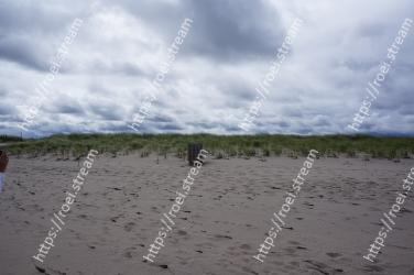 Sky, Sand, Beach, Natural environment, Cloud, Sea, Ecoregion, Ocean, Coast, Shore