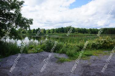 Natural landscape, Natural environment, Nature, Nature reserve, Vegetation, Tree, Water, Bank, Wilderness, Land lot