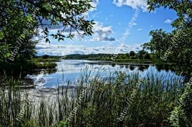 Natural landscape, Body of water, Nature, Water, Reflection, Nature reserve, Sky, Vegetation, Tree, Natural environment
