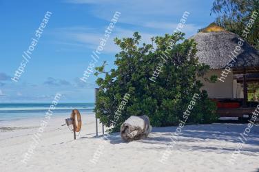 Beach,Vacation,Caribbean,Tropics,Ocean,Tree,Sea,Shore,Summer,Tourism