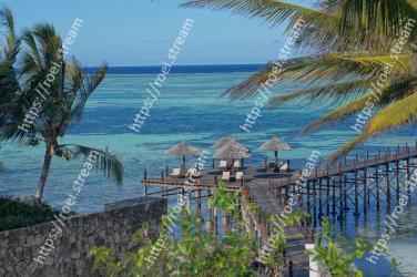 Tree, Sea, Palm tree, Tropics, Ocean, Vacation, Coast, Azure, Sky, Shore