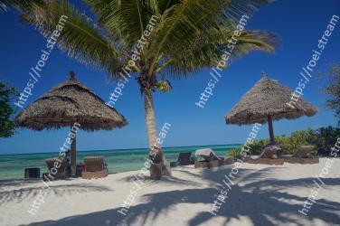 Tropics, Vacation, Tree, Palm tree, Beach, Arecales, Resort, Thatching, Caribbean, Woody plant