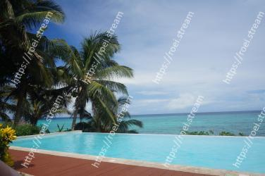 Swimming pool, Resort, Tree, Tropics, Property, Caribbean, Vacation, Palm tree, Arecales, Sea