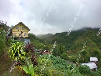 Vegetation, Hill station, Nature, Highland, Natural landscape, Atmospheric phenomenon, Rural area, Mountain village, Hill, Mountain
