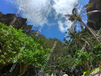 Vegetation, Nature, Sky, Tree, Jungle, Natural environment, Wilderness, Biome, Nature reserve, Rainforest