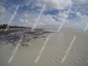Body of water, Sky, Beach, Shore, Sand, Sea, Water, Coast, Natural environment, Ocean