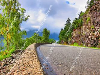 Road, Nature, Asphalt, Sky, Tree, Natural landscape, Road surface, Thoroughfare, Leaf, Infrastructure