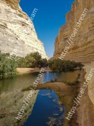 Body of water, Nature, Wadi, Water, Narrows, Reflection, River, Water resources, Canyon, Rock Ein Avdat